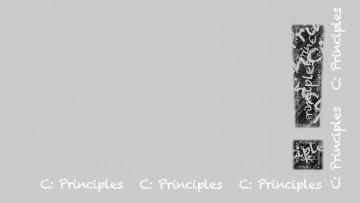 part-C-Principles